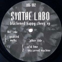 Synthe.Labo - Blackened...