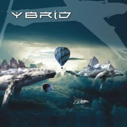 Ybrid - Animal