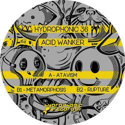 Acid Wanker