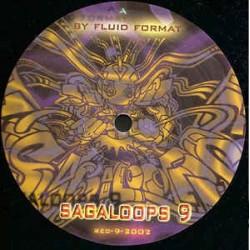Fluid Format - Sagaloops 9