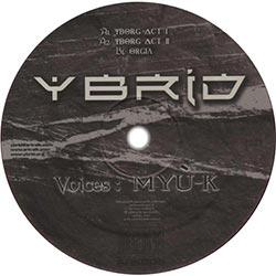 Ybrid - Yborg