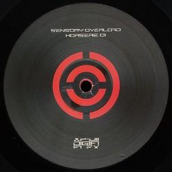 Sensory Overload - Horserie 01