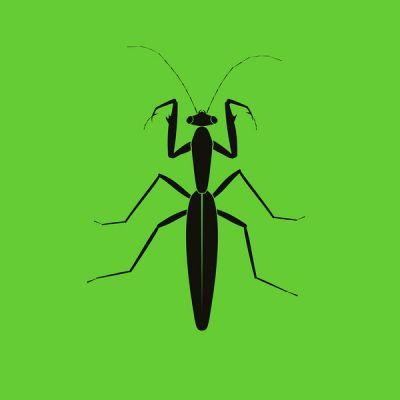 1NC1N - Praying Mantis