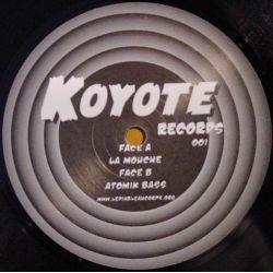 Nout - Koyote 1