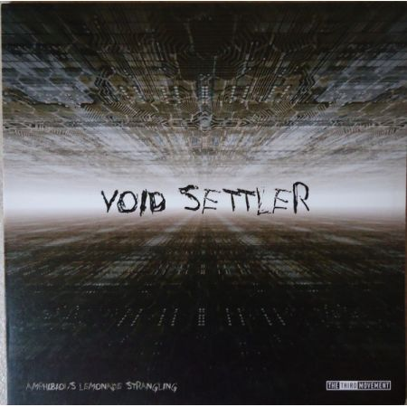 Void Settler / Labyrinth -